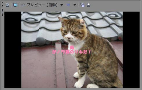 008_R.jpg